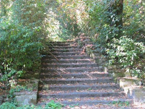 20120303-070830.jpg