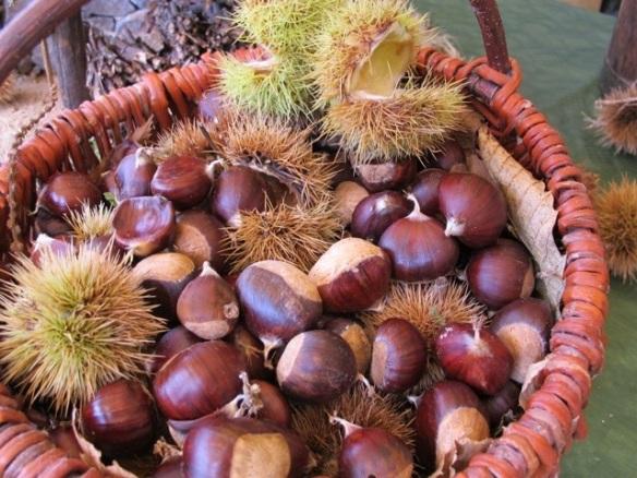 Chestnut festival Ponte
