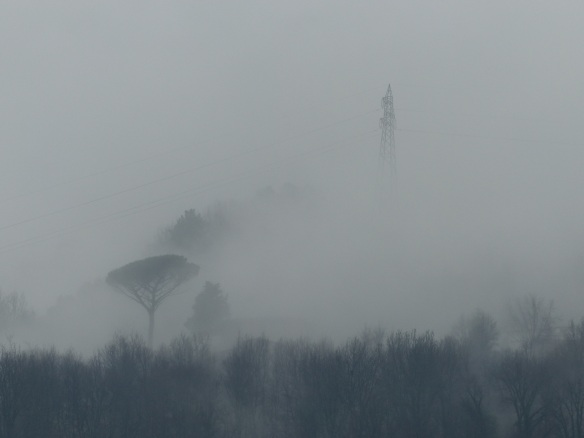 winter mists