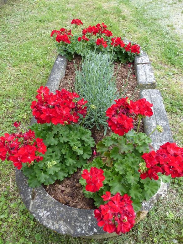 Ponte a Serraglio flowers