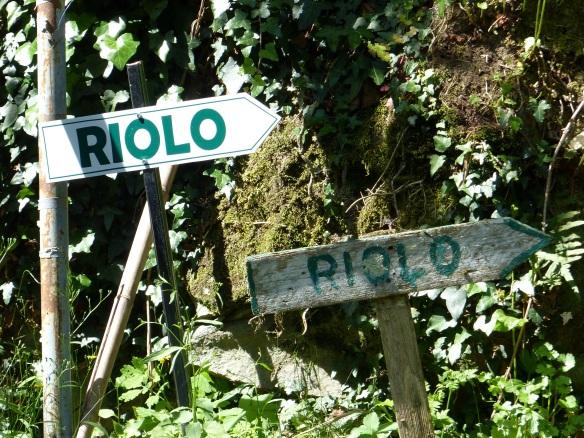 Riolo