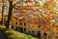 autumn in San Cassiano