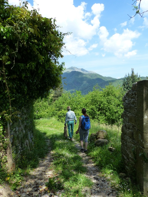 a walk to Ponte a Serraglio