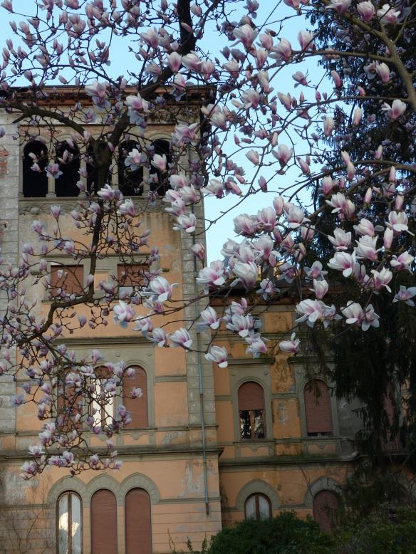 magnolias Villa Fiori