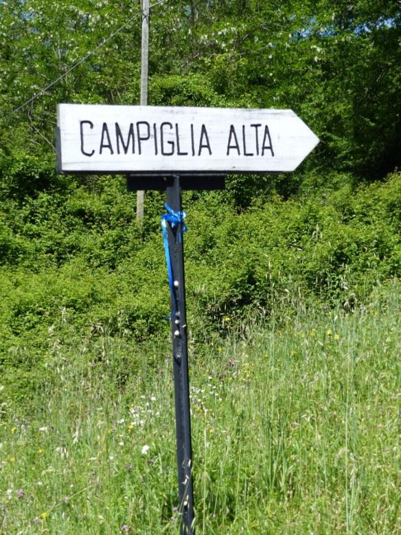 Campiglia Alta